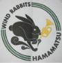 WIND RABBITS (ウインドラビッツ)|浜松市の初心者フットサルチーム
